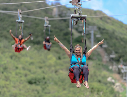 Rainforest Adventures St Maarten has one of the top Caribbean attractions