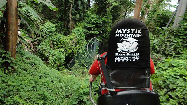 Jamaica Mystic Mountain