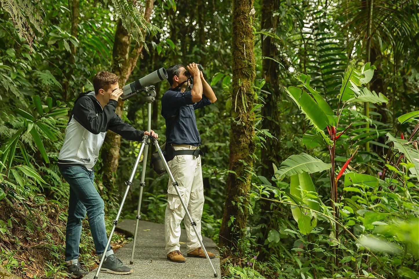 costa rica birding tour