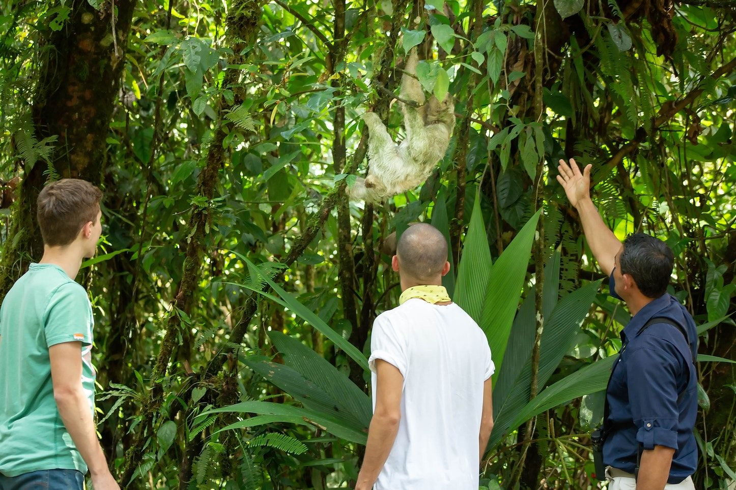 Guided Tours Jamaica
