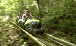 Bobsled Mystic Mountain Jamaica