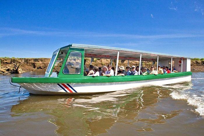 Mangrove river tour Rainforest Adventures Costa Rica