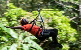Zipline at Mystic Mountain Jamaica