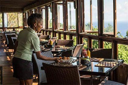 Restaurant and bar at Jamaica Mystic Mountain