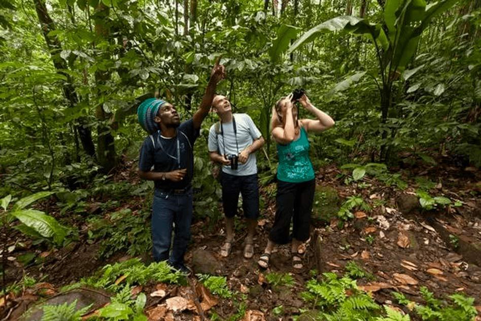 St. Lucia excursions tours