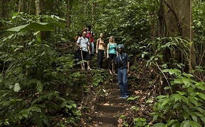 St. Lucia jacquot trail hike